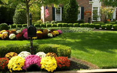 Our Top Tips for Preparing Your Yard for the Fall